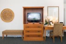 Efficiency Apartment